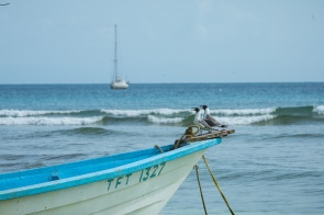 Tobago July 2012